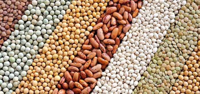 Legumes Improve Heart Risk, Glycemic Control